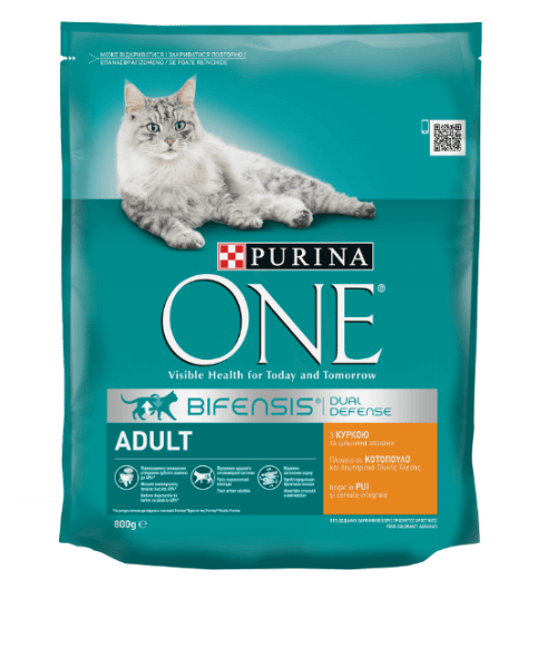 One_Cat_Dry_Adult_Chicken_Whole_Grains_800g_front