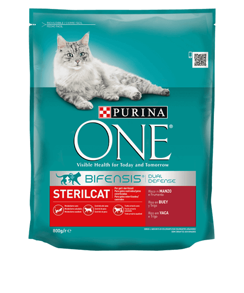 07613035125346_C1L1_One_Cat_Beef_Wheat_1.5kg.png
