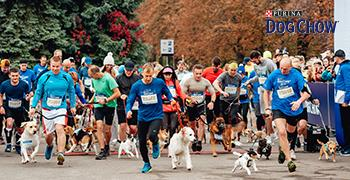Dog Chow® Run & Wizz Air Kyiv City Marathon 2019!